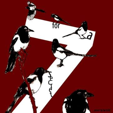 7 magpies square